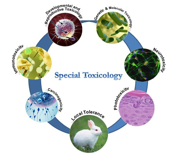 Special Toxicology Services
